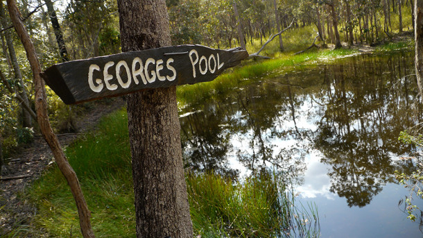 Georges Pool, Atherton Forest Mountain Bike Park