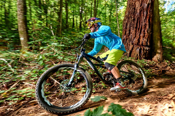 Into the woods, Ibis Mojo 3 Review